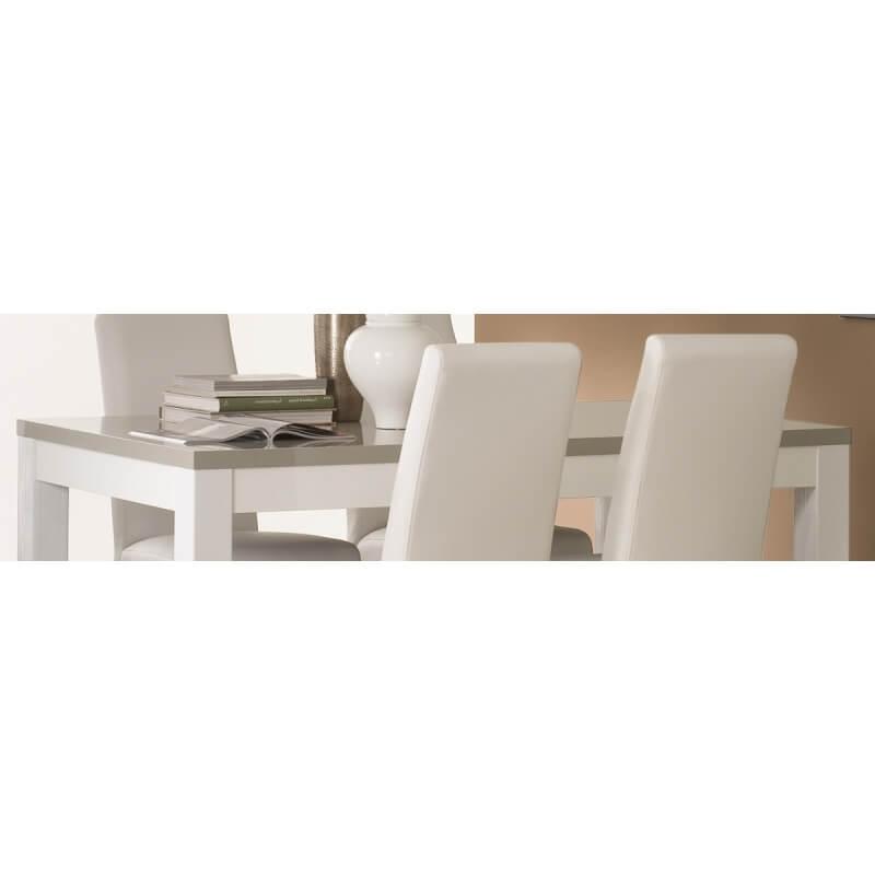 table de salle manger design laqu e blanche et grise. Black Bedroom Furniture Sets. Home Design Ideas