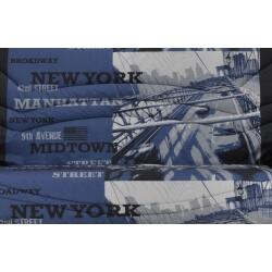 Housse BZ & 2 housses de coussin coloris noir et bleu imprimé Franklin