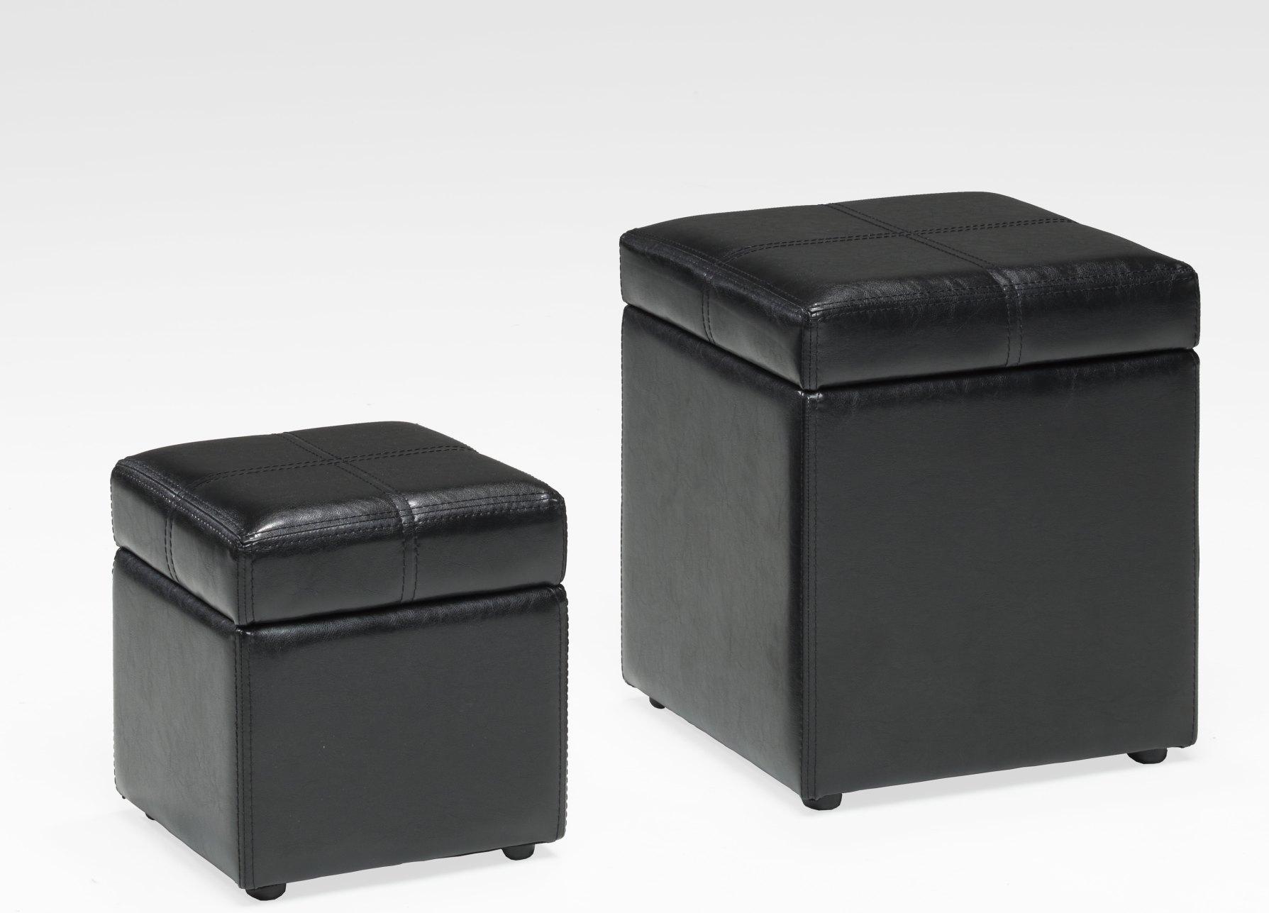 Lot de 2 poufs-coffre RAPHAEL